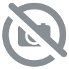 Carte electronique Q50 en 12v